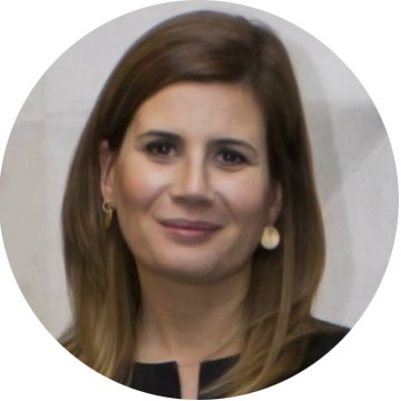 Joana Marcelino copie