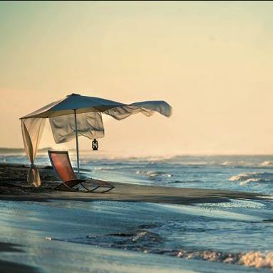Cette chaise longue FISH EGOParis est disponible en plusieurs couleurs tendances et contemporaines.